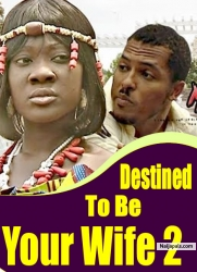 Destined to be Your Wife 2