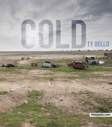 Cold (Prod. by Wilson Joel) by TY Bello