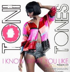 i Know You Like It Remix by Toni Tones ft. Vector, ELDee & Ajebutter