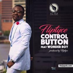 Control Button by Fliptyce + Wonder Boy