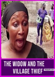 The Widow And The Village Thief