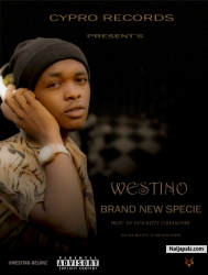 BRAND NEW by WESTINO