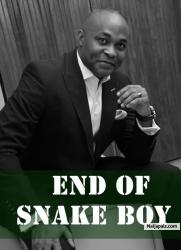 End Of Snake Boy