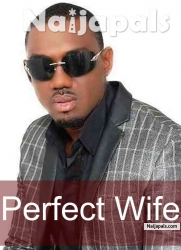 Perfect Wife 2