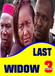 Last Widow 3