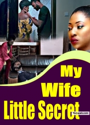 My Wife Little Secret