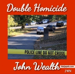 Double Homicide by John Wealth
