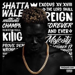 Wonders by Shatta Wale ft. Olamide