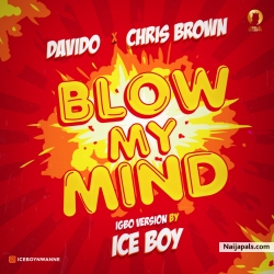 Davido, Chris Brown Blow My Mind (Igbo version) by Iceboy by Iceboy