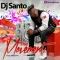DJ SANTO