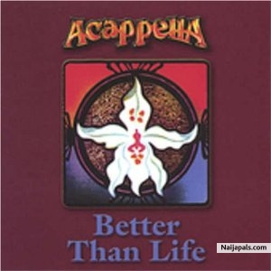 Acapella - Better Than Life | Naija Songs // Naijapals