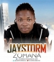 Jaystorm