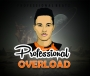 Overload by Professional