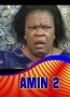 AMIN 2