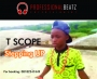 T scope-STEPPING UP by T scope (Professional Beatz Ent.)