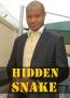 Hidden Snake 2