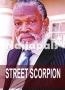 STREET SCORPIONS