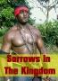Sorrows In The Kingdom
