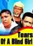 Tears Of A Blind Girl Season 2
