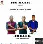 DOBALE - SKILASHI X TORSION X JESUH by BSG MUSIC