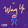 Werey yo (Prod By Masterkraft) by CDQ