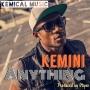 Anything by Kemini