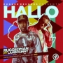 Hallo Ruggedman ft Lamboginny