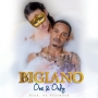 One & Only Bigiano