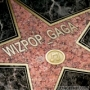 Gaga by Wizpop