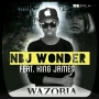 Nbj Wonder feat King James Wazobia by Nbj Wonder