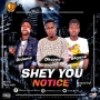 SHEY YOU NOTICE {Prod. By NOLLY GRIFFIN} by E.B.M FT DIDOMZ X DHOZEE X SKYONE