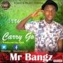 Carry Go (Prod by Vtek) Mr Bangz