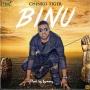 Binu by Chinko Ekun