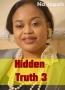 Hidden Truth 3