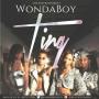 Ting Wondaboy
