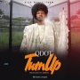 Turn Up (Prod. By Antras) by Qdot