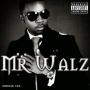 Mr. Walz