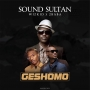 Sound Sultan ft. Wizkid & 2Baba