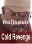 Cold Revenge 2