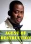 Agent of Destruction 2