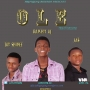Ole by HypeGang ft (Dammy, Skineejay , Fas) by HG ft (Dammy , Skineejay , Fas)