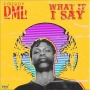 What If I Say (Prod. By Pheelz) by Fireboy DML