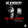 Rudeboy Ft. Reminisce