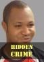 Hidden Crime 2
