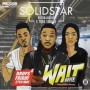 Wait Solidstar ft. Patoranking & Tiwa Savage