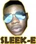 sleek-E