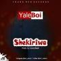 Yaleboi by Shekiriwa