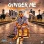 Ginga me by Baba lyrical