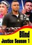 Blind Justice Season 1