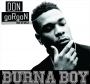 Don Gorgon by Burna Boy